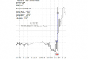 News Hour Trade EA System for MT4